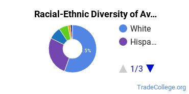 Racial-Ethnic Diversity of Avionics Maintenance Technology/Technician Students with Associate's Degrees