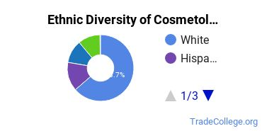 Cosmetology Majors in KS Ethnic Diversity Statistics