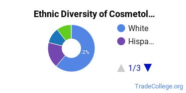 Cosmetology Majors in MA Ethnic Diversity Statistics