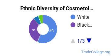 Cosmetology Majors in TN Ethnic Diversity Statistics