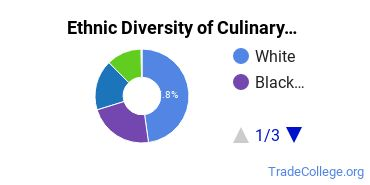 Culinary Arts Majors in CO Ethnic Diversity Statistics