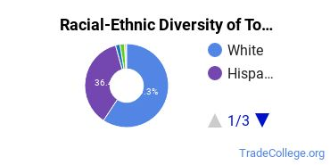 Racial-Ethnic Diversity of Tool and Die Tech Students with Associate's Degrees
