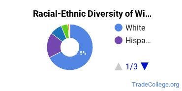 Racial-Ethnic Diversity of Wielding Students with Associate's Degrees