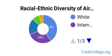 Racial-Ethnic Diversity of Airline/Commercial/Professional Pilot and Flight Crew Basic Certificate Students