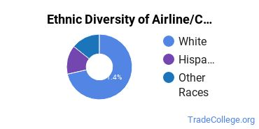 Airline Pilot & Flight Crew Majors in NY Ethnic Diversity Statistics