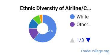Airline Pilot & Flight Crew Majors in WA Ethnic Diversity Statistics