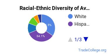 Racial-Ethnic Diversity of Aviation/Airway Management and Operations Students with Associate's Degrees