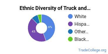 Truck & Bus Driver/Instructor Majors in KS Ethnic Diversity Statistics