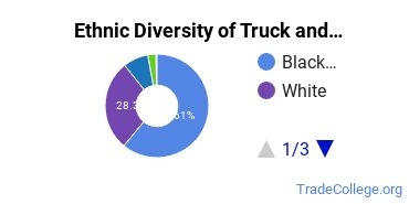 Truck & Bus Driver/Instructor Majors in MI Ethnic Diversity Statistics