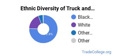 Truck & Bus Driver/Instructor Majors in MS Ethnic Diversity Statistics