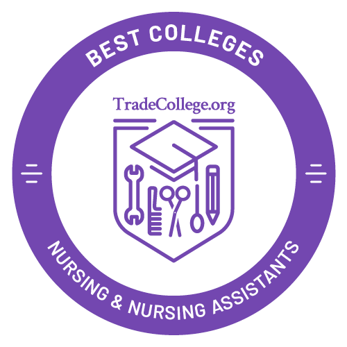 Top Trade Schools in Practical Nursing